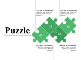 Puzzle Presentation Examples