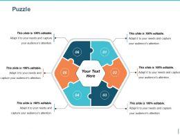 Puzzle Presentation Portfolio