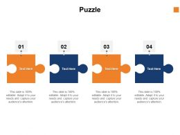 Puzzle Problem Solution C1037 Ppt Powerpoint Presentation Inspiration Background Designs