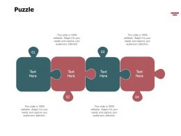 Puzzle Problem Solution L349 Ppt Powerpoint Presentation Styles Visuals