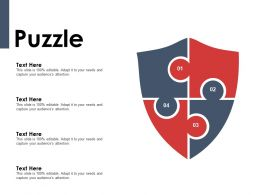 Puzzle Problem Solution Ppt Powerpoint Presentation Gallery Background Designs