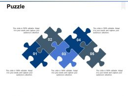 Puzzle Problem Solution Ppt Powerpoint Presentation Gallery Summary