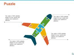 Puzzle Problem Solution Ppt Show Infographic Template