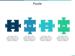 Puzzle Problem Solution Ppt Summary Infographic Template