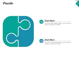 Puzzle Solution Problem Ppt Inspiration Graphics Example