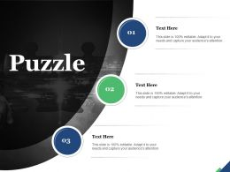 Puzzle Solution Problem Solving Success Marketing Management