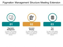 Pygmalion Management Structure Meeting Extension Strategy Five Competitive Forces Cpb
