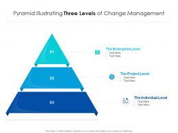 Pyramid Illustrating Three Levels Of Change Management