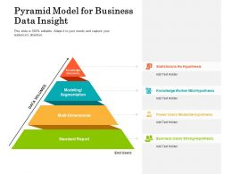 Pyramid Model For Business Data Insight
