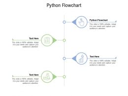 Python Flowchart Ppt Powerpoint Presentation Summary Template Cpb