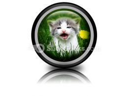 Baby Cat PowerPoint Icon Cc