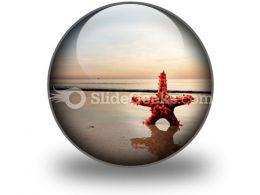 Beach Starfish PowerPoint Icon C