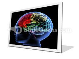 Brain PowerPoint Icon F