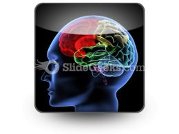 Brain PowerPoint Icon S