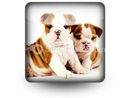 Bulldogs Animals PowerPoint Icon S