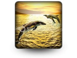 Dolphins PowerPoint Icon S