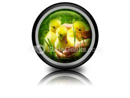 Gosling PowerPoint Icon Cc
