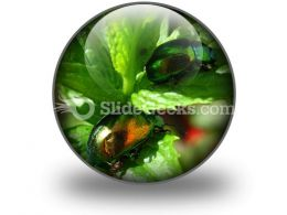 Shiny Beetles PowerPoint Icon C