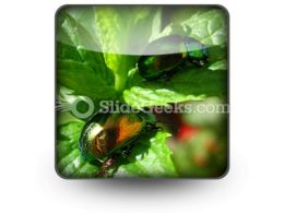 Shiny Beetles PowerPoint Icon S