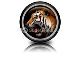 Tiger PowerPoint Icon Cc