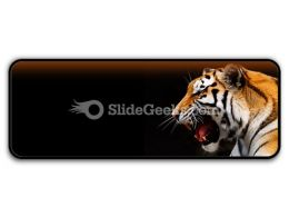 Tiger PowerPoint Icon R