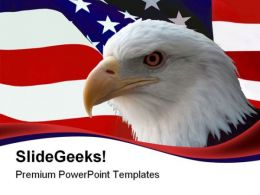 American Bald Eagle Animals PowerPoint Templates And PowerPoint Backgrounds 0611