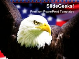 American Eagle Animals PowerPoint Template 1010