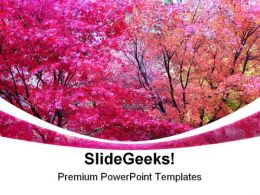 Autumn Colours Nature PowerPoint Templates And PowerPoint Backgrounds 0211