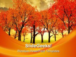 Autumn Forest Nature PowerPoint Template 1010