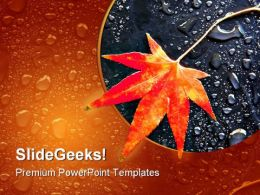 Autumn Leaf Beauty PowerPoint Template 1110