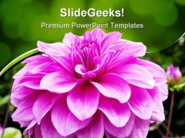 Bloom Beauty PowerPoint Templates And PowerPoint Backgrounds 0211