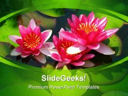 Blooming Lily Nature PowerPoint Templates And PowerPoint Backgrounds 0211