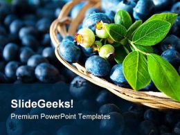 Blue Berries Food PowerPoint Templates And PowerPoint Backgrounds 0211