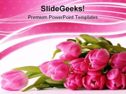 Bouquet Of Tulips Beauty PowerPoint Templates And PowerPoint Backgrounds 0311