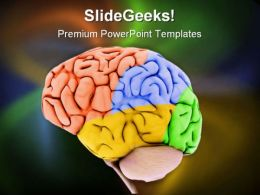 Brain Science PowerPoint Templates And PowerPoint Backgrounds 0411