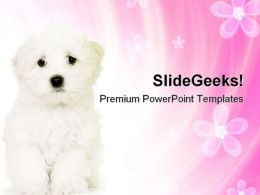 Cute Dog Animals PowerPoint Templates And PowerPoint Backgrounds 0711