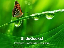 Dew And Butterfly Nature PowerPoint Templates And PowerPoint Backgrounds 0411