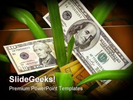Dollar Tree Money PowerPoint Backgrounds And Templates 1210