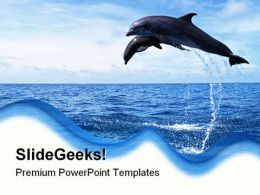 Dolphins Jumping Animals PowerPoint Templates And PowerPoint Backgrounds 0211