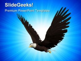 Eagle Flying Animals PowerPoint Templates And PowerPoint Backgrounds 0211