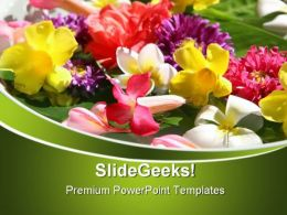 Exotic Coloured Flowers Beauty PowerPoint Templates And PowerPoint Backgrounds 0311