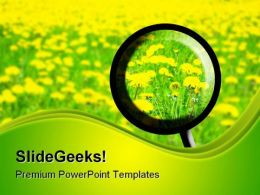 Exploring Spring Nature PowerPoint Templates And PowerPoint Backgrounds 0511