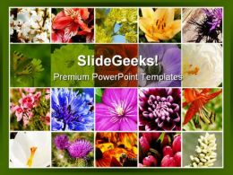 Floral Mosaic Beauty PowerPoint Template 0810