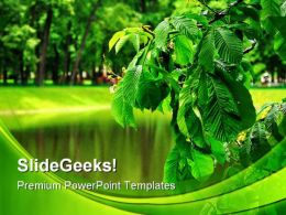 Foliage Rain Nature PowerPoint Backgrounds And Templates 0111