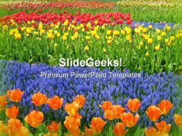 Garden Of Flowers Nature PowerPoint Templates And PowerPoint Backgrounds 0511