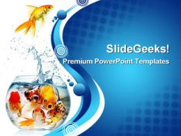 Gold Fish Animals PowerPoint Templates And PowerPoint Backgrounds 0311