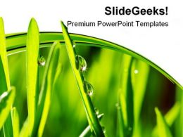 Grass Nature PowerPoint Templates And PowerPoint Backgrounds 0411