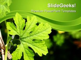 Green Plant Nature PowerPoint Templates And PowerPoint Backgrounds 0611
