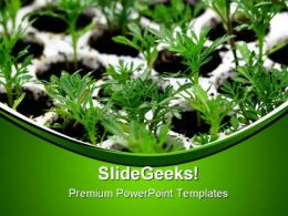 Green Plants Nature PowerPoint Templates And PowerPoint Backgrounds 0411