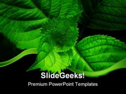 Green Spiral Leaves Nature PowerPoint Templates And PowerPoint Backgrounds 0511